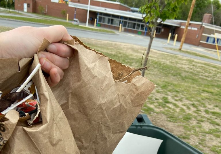 Litter Pickup at Gossler Park School